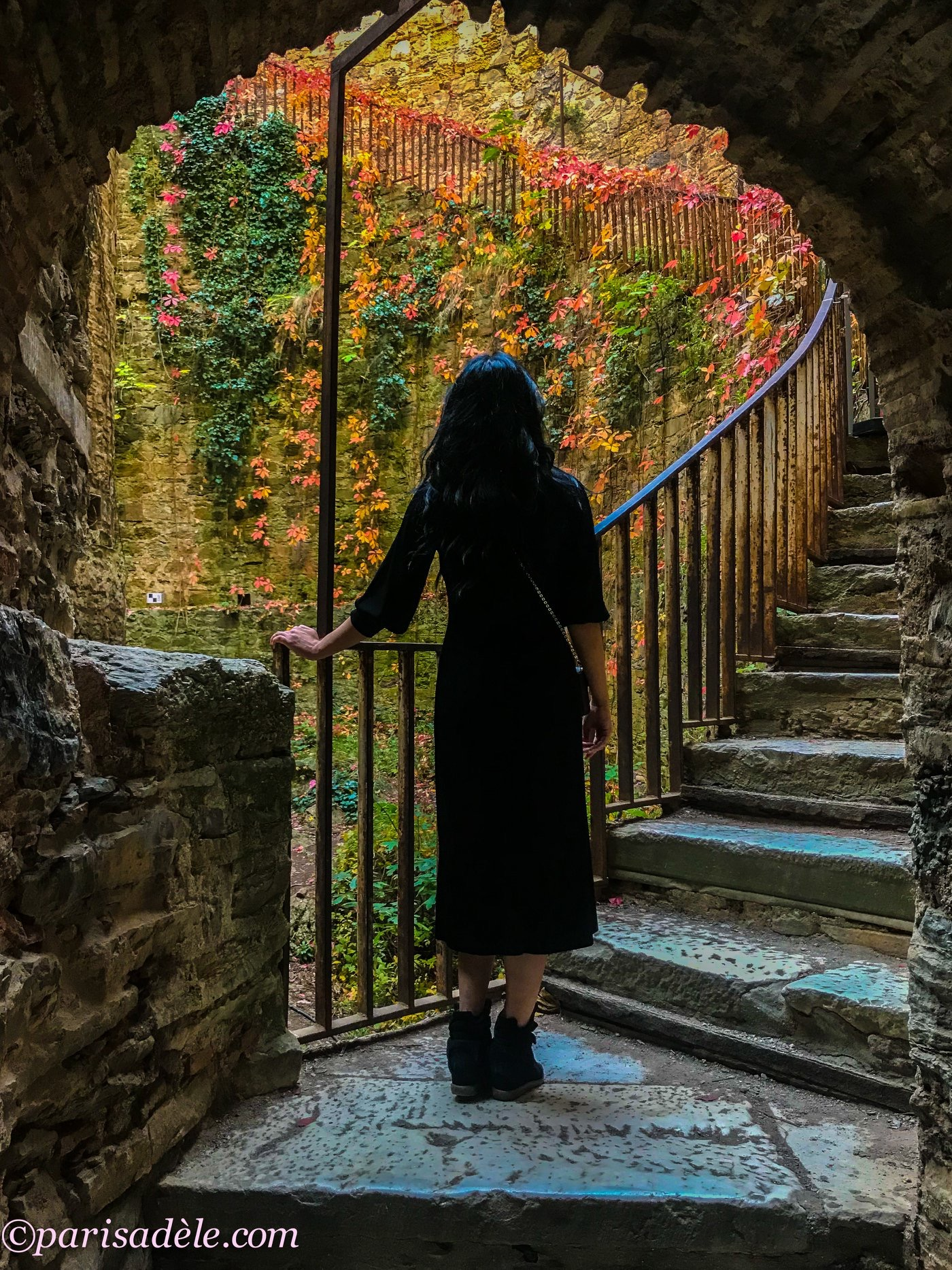 A woman in a black dress standing in an archway looking up ancient stone steps. The background is a stone wall covered in green, orange, and red vines.