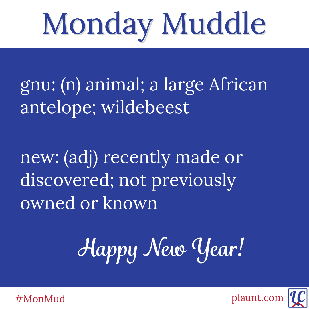 Monday Muddle: gnu: (n) animal; a large African antelope; wildebeest new: (adj) recently made or discovered; not previously owned or known Happy New Year!