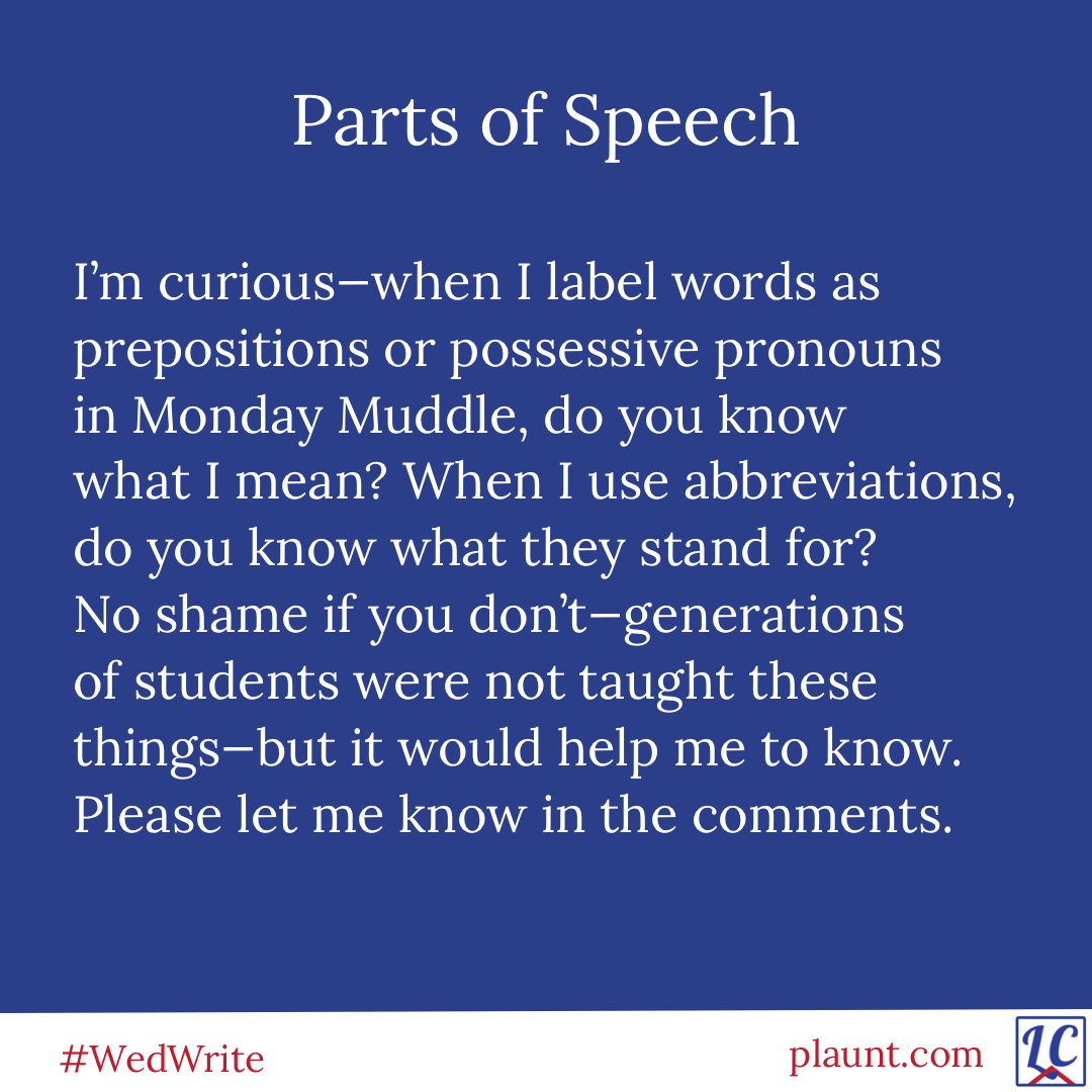 Parts of Speech: I'm curious--when I label words as prepositions or possessive pronouns in Monday Muddle, do you know what I mean? When I use abbreviations, do you know what they stand for? No shame if you don't--generations of students were not taught these things--but it would help me to know. Please let me know in the comments.