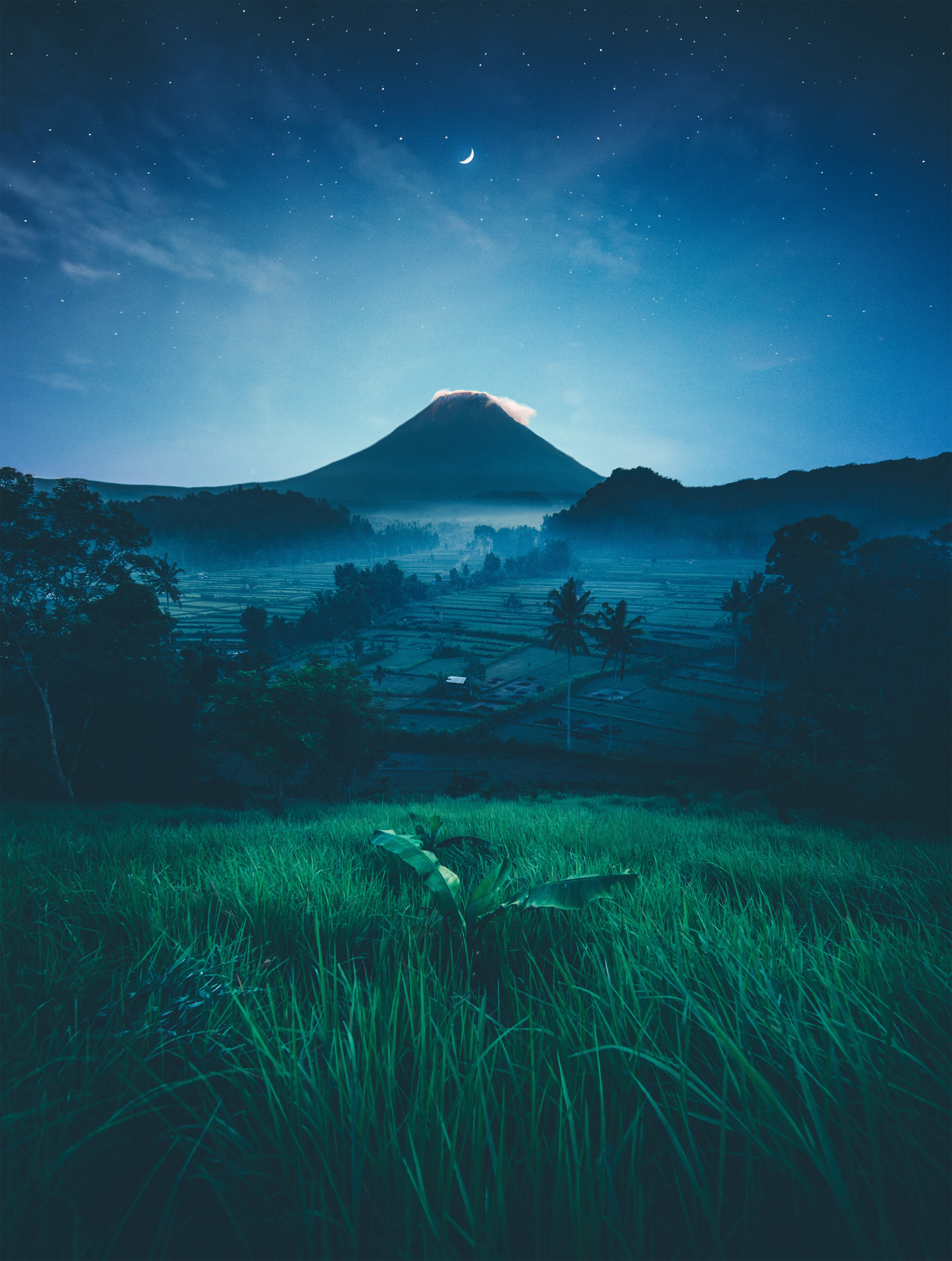 A mountain in Bali underneath a night sky with a crescent moon. A field of tall grasses is in the foreground, and agricultural fields are in the centre of the photo.