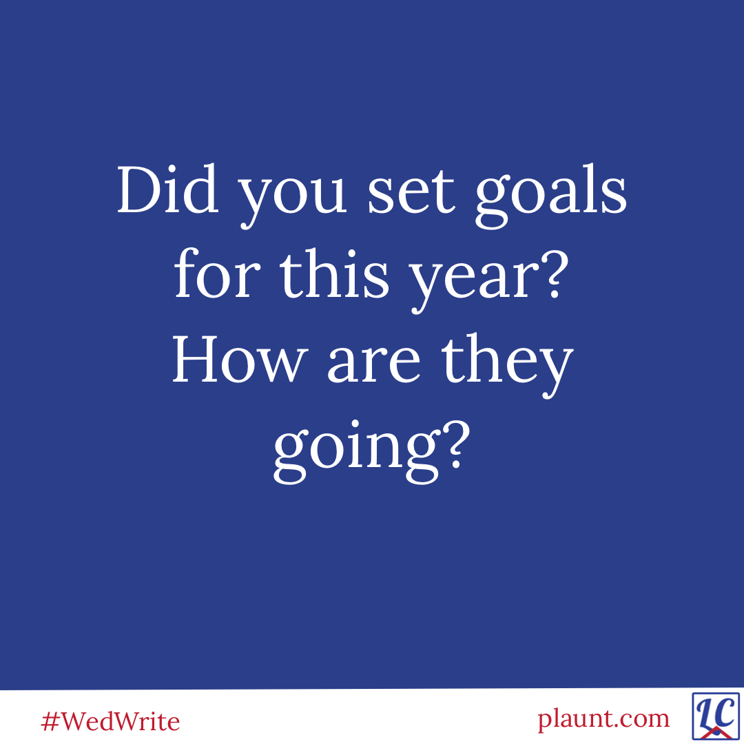 Did you set goals for this year? How are they going?